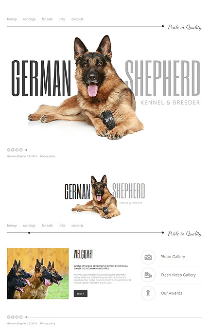 MotoCMS дизайн German Shepherd