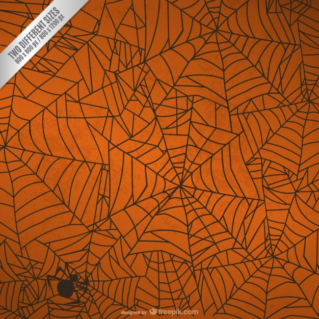 Halloween spider web background