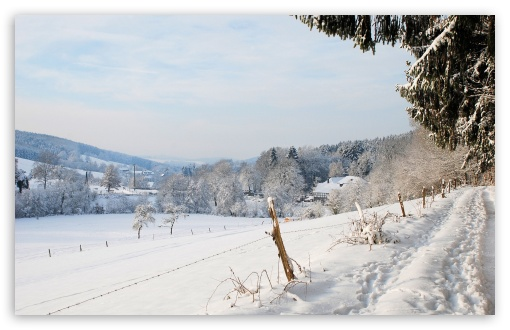 Winter Country Landscape