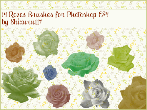 14 Roses Brushes for Photoshop CS4