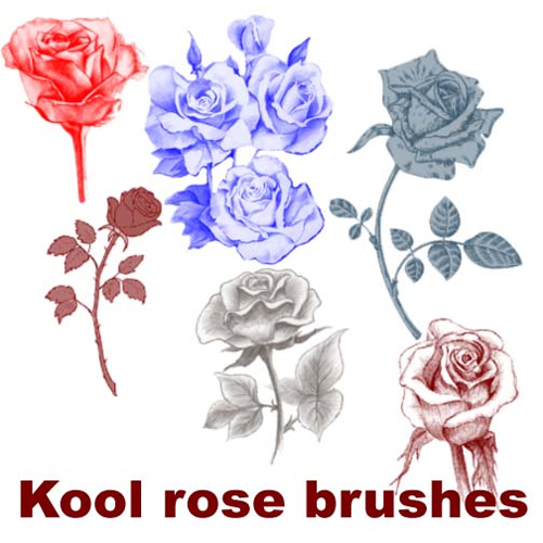 Kool rose brushes
