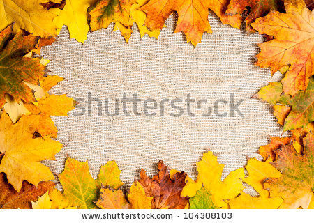 Fallen maple leaves on canvas