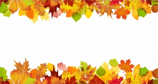 Fall Border Vector