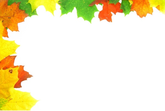 Leaves Border HD