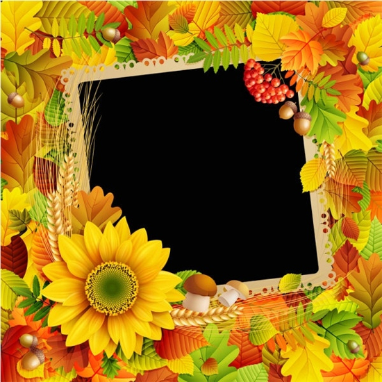 Beautiful Leaves Frame Background