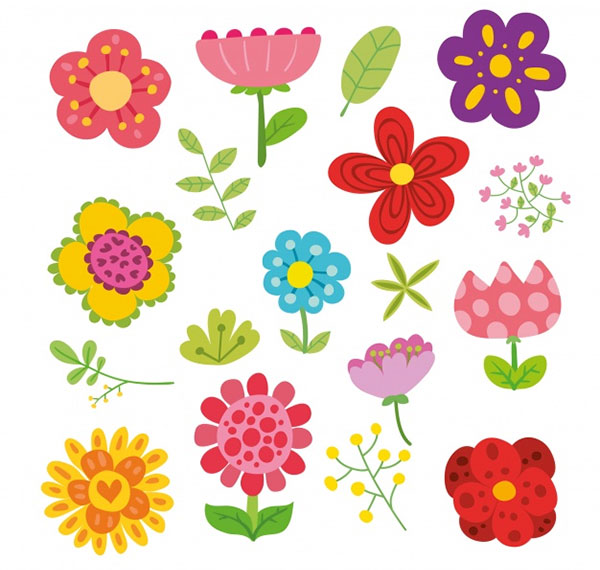 Flowers Illustration Collection