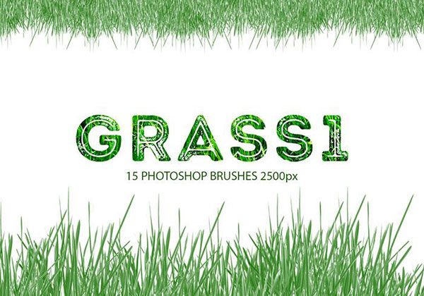 15 Grass Photoshop Brushes, 2500px