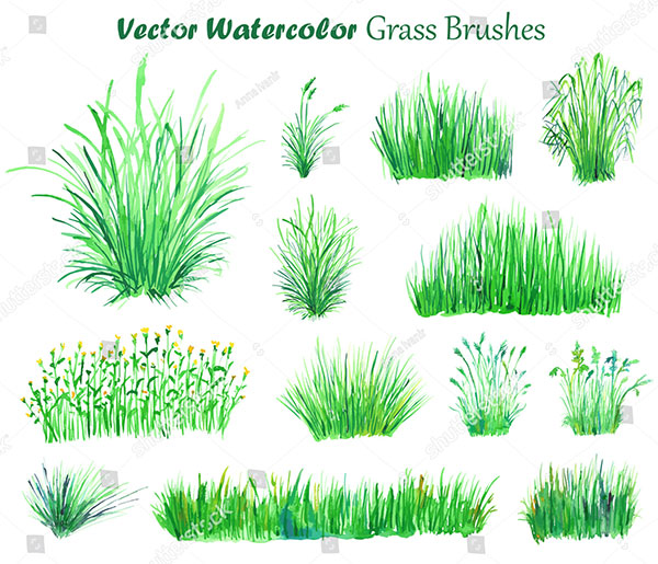 Watercolor Vector Grass Illustration