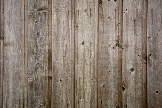 Wooden Texture by Andrew Taylor
