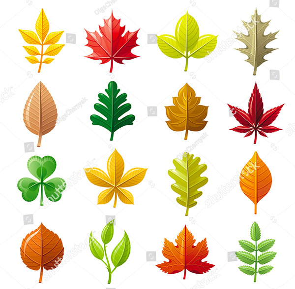 Leaves Vector Iconset