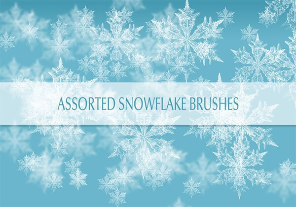 Real Snow Flakes Brushes