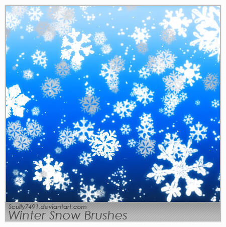 Winter Snow Brushes