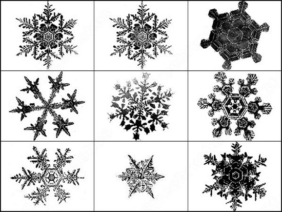 Snowflakes Brush Abr Format