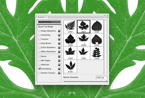 Free High-Res Photoshop Leaves Brushes