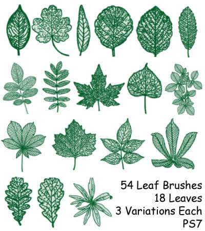 PS7 - 54 Leaf Brushes
