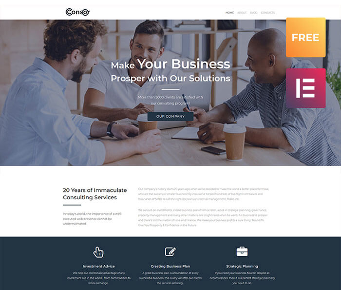 Consor lite - Business Consulting Elementor