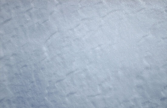 DM Winter Texture3